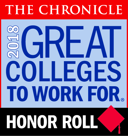 The Chronicle Great Colleges to Work For 2018 Honor Roll icon