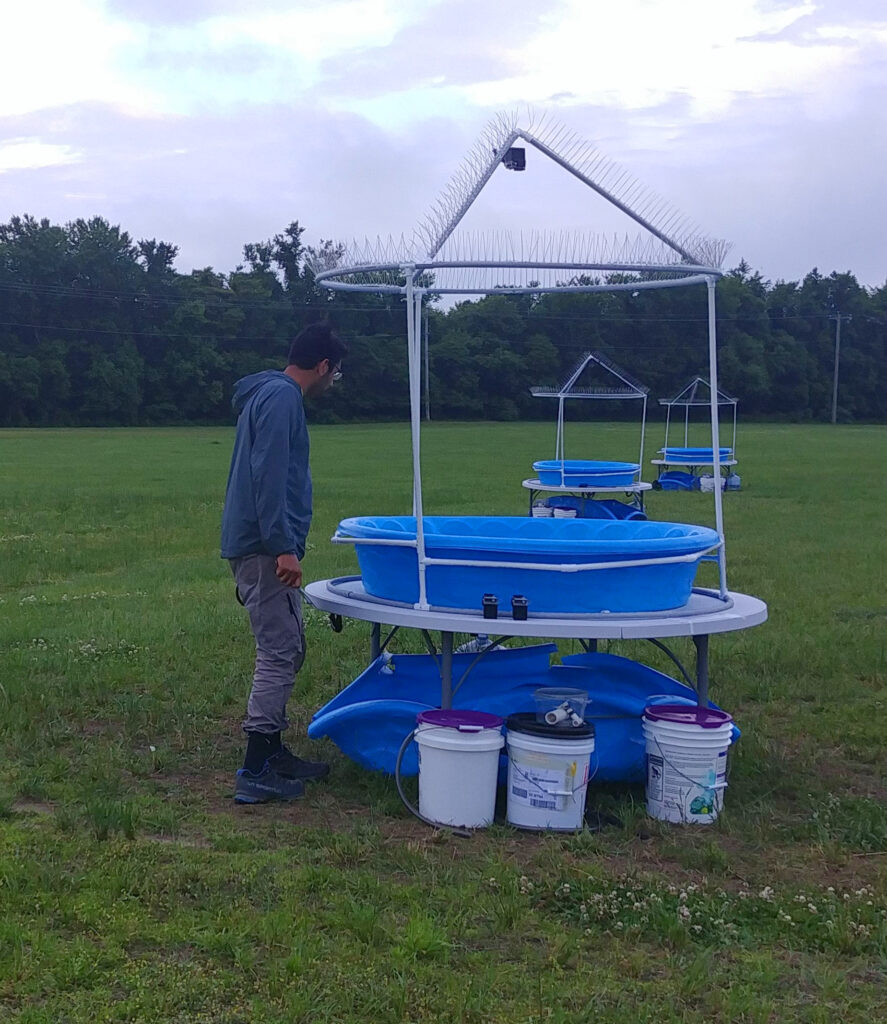 Ricky Patel with his outdoor experimental setup.