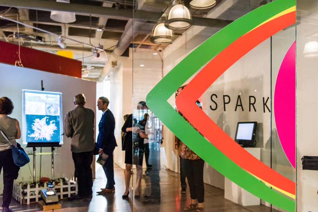 The SPARK gallery (shown here in 2018) will showcase art and performances.