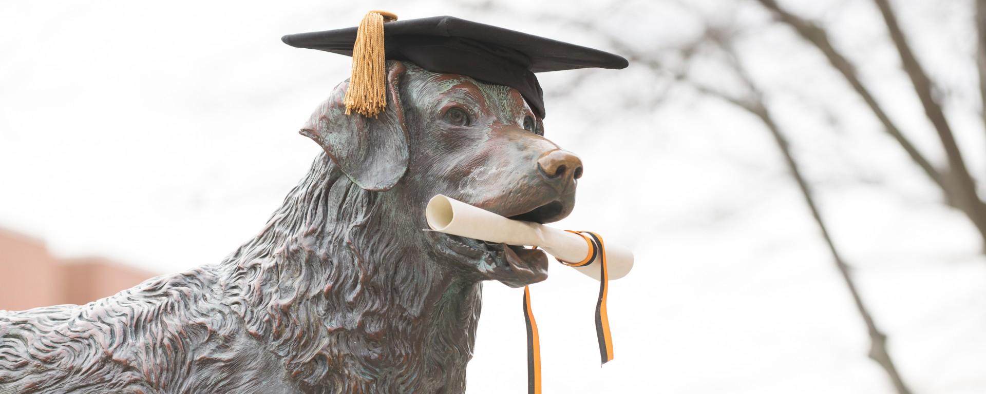 True Grit statue at December 2015 graduate commencement
